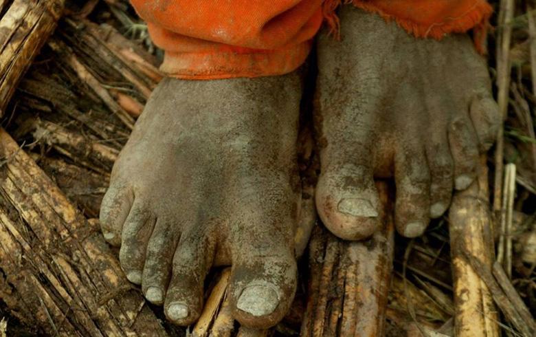 MPT terá lista de empregadores condenados por trabalho escravo ou tráfico de pessoas