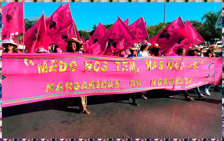 Sementes que são, Margaridas mostram que resistência é necessária e possível