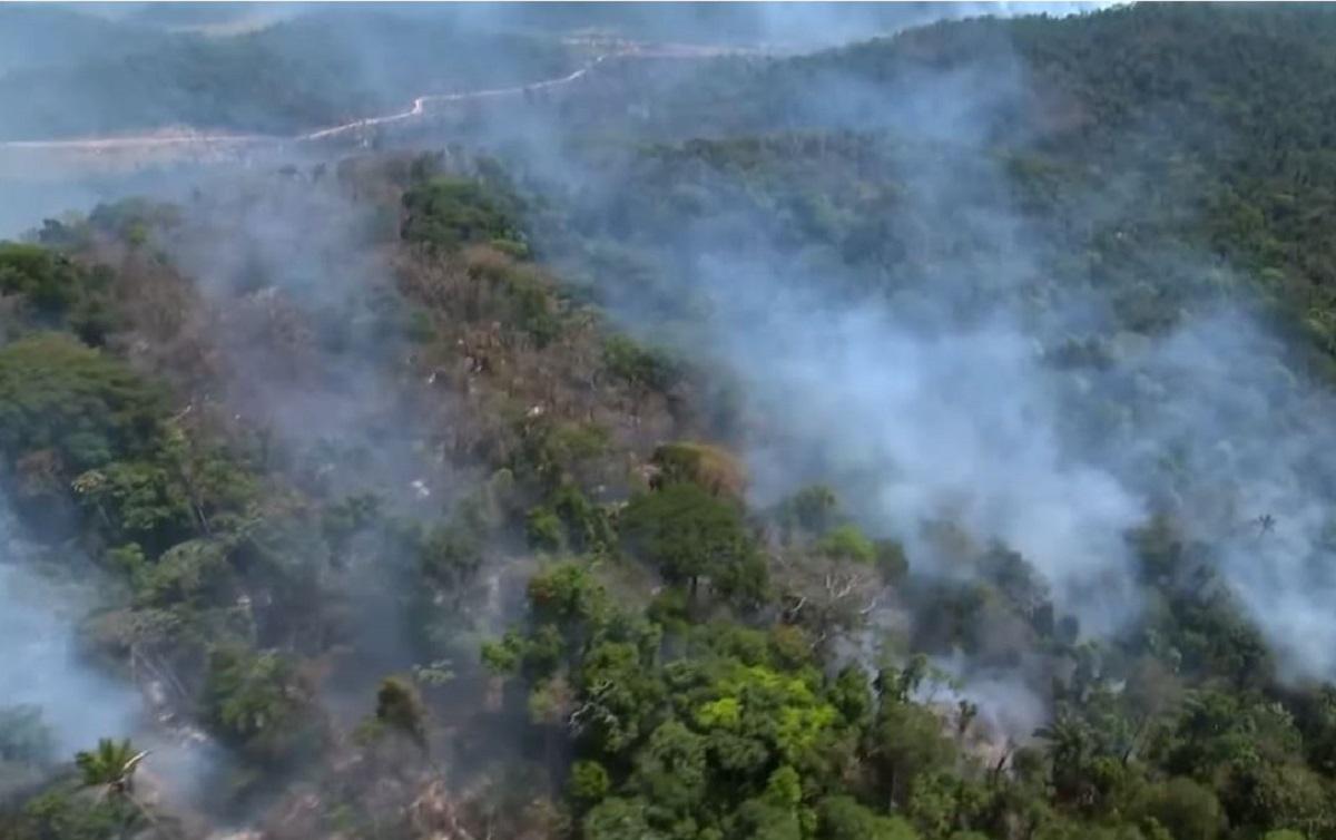 Resultado de imagem para queimadas na amazonia you tube