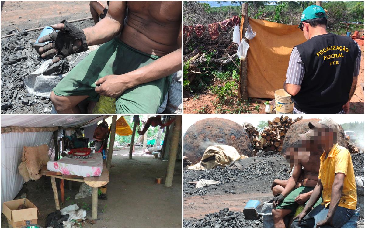 Barraco improvisado, carne no varal, banheiro no mato: 17 resgatados em situação de escravidão